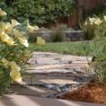 Kelly Marshall 's garden, Clayton